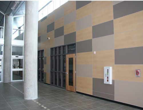 Wall Panel Systems: 4 Unique Options to Customize Your Interior